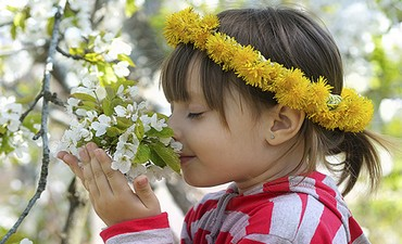 Весенние майские праздники- идеи весны