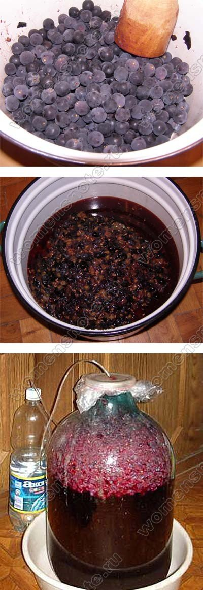 Приготовления вина из винограда в домашних условиях из изабеллы